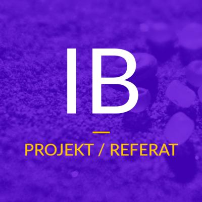Projekt / Referat – IB