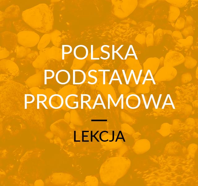 Lekcja Indywidualna Polska Podstawa Programowa MEN